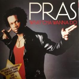 Pras Michel - What'cha Wanna Do