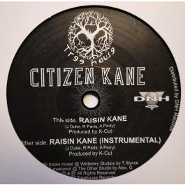 Citizen Kane - Raisin Kane