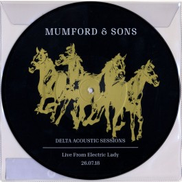 Mumford & Sons - Delta Acoustic Sessions