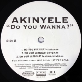 Akinyele - Do You Wanna?
