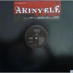 Akinyele - In The World