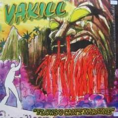 Vakill - Flows U Can't Imagine