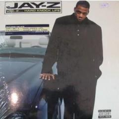 Jay-Z - Vol.2...Hard Knock Life