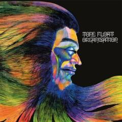 Organisation - Tone Float (Reissue)