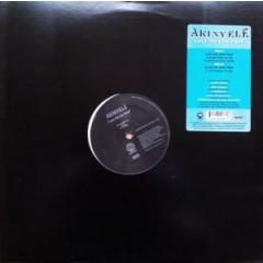 Akinyele - Love Me For Free