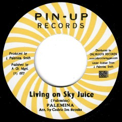 Palemina - Living On Sky Juice