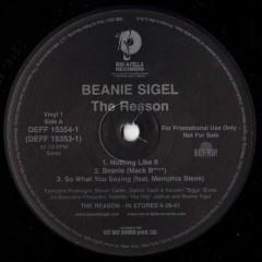 Beanie Sigel - The Reason