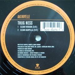 Akinyele - Thug Ness