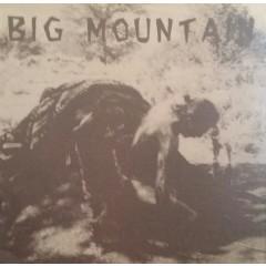 Various - Big Mountain - Benefit Compilation
