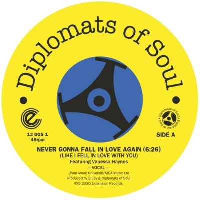 Diplomats Of Soul - Never Gonna Fall In Love Again