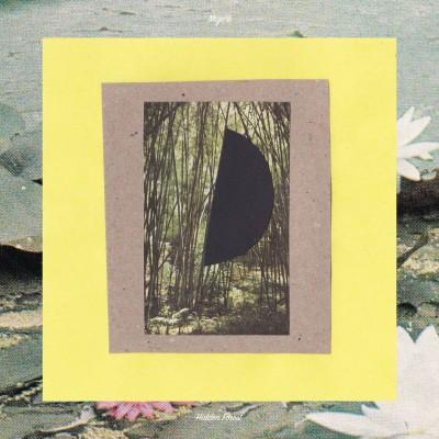Mujo情 - Hidden Forest