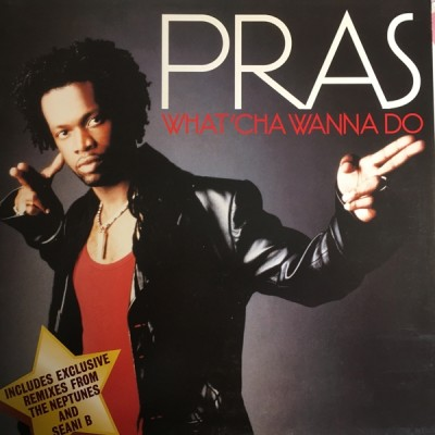 Pras Michel - What'cha Wanna Do