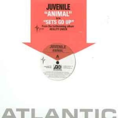 Juvenile (2) - Animal / Holla Back