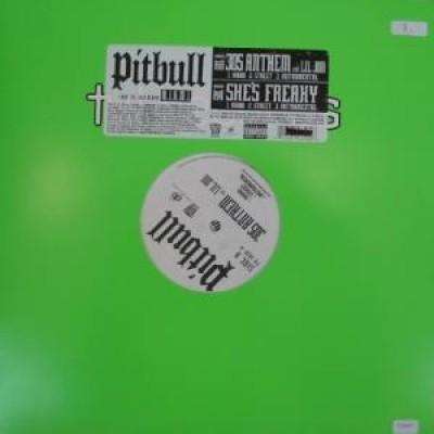 Pitbull - 305 Anthem