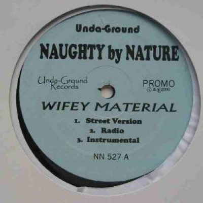 Naughty By Nature - Wifey Material
