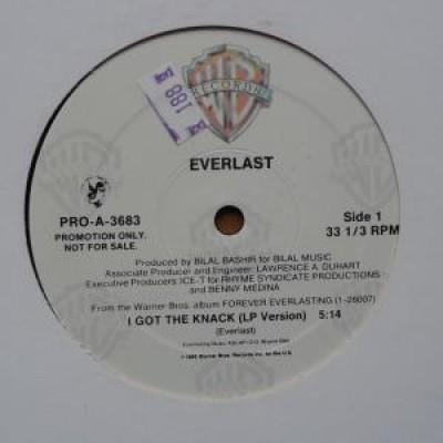 Everlast - I Got The Knack