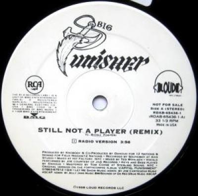Big Punisher - Still Not A Player