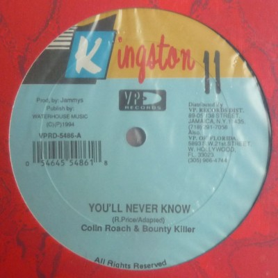Bounty Killer - You'll Never Know / Me A Matey