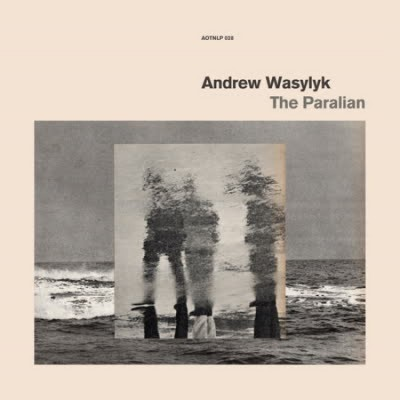 Andrew Wasylyk - The Paralian