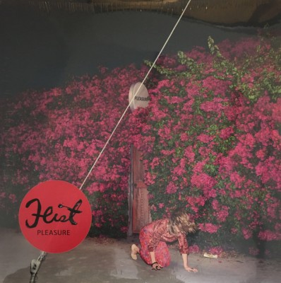Feist - Pleasure