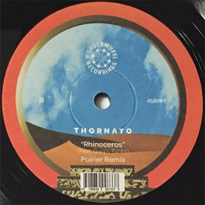 Thornato Feat. Gappy Ranks - Rhinoceros