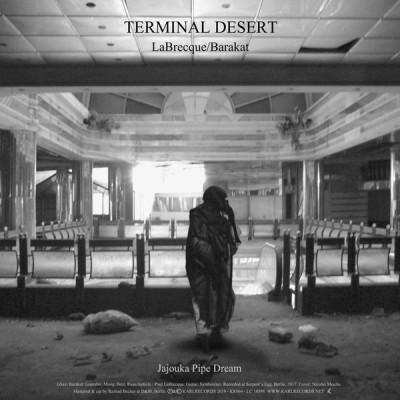 Paul LaBrecque - Terminal Desert