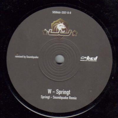 W - Springt