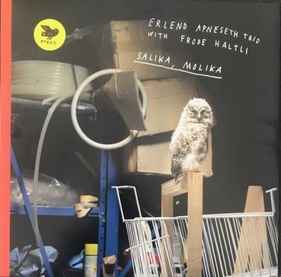 Erlend Apneseth Trio - Salika, Molika