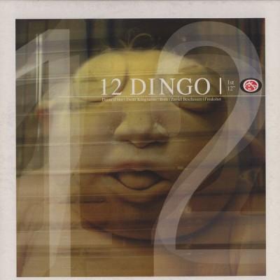 "12 Dingo - 1st 12"""