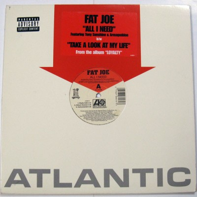 Fat Joe - All I Need / Take A Look At My Life