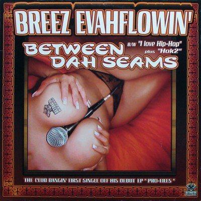 Breez Evahflowin' - Between Dah Seams