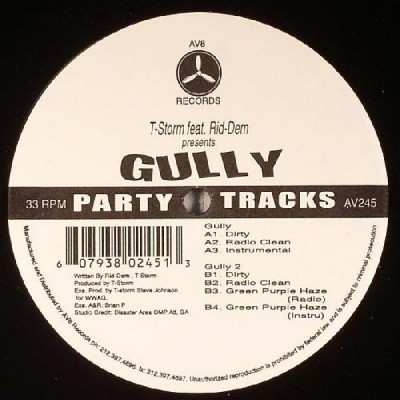 T-Storm - Gully