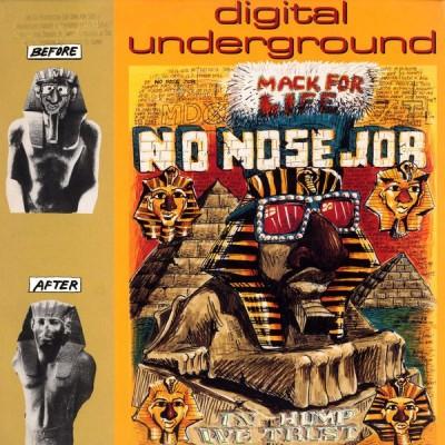 Digital Underground - No Nose Job